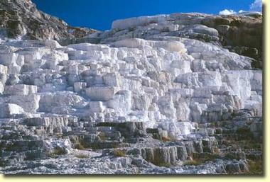 Углекислая известь (Calcarea carbonica)