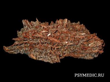 Металлическая и уксуснокислая медь (Cuprum metallicum, aceticum)