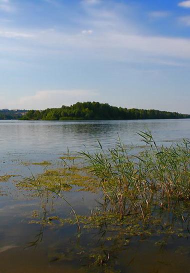 Водопроводная вода в Киеве сильно загрязнена